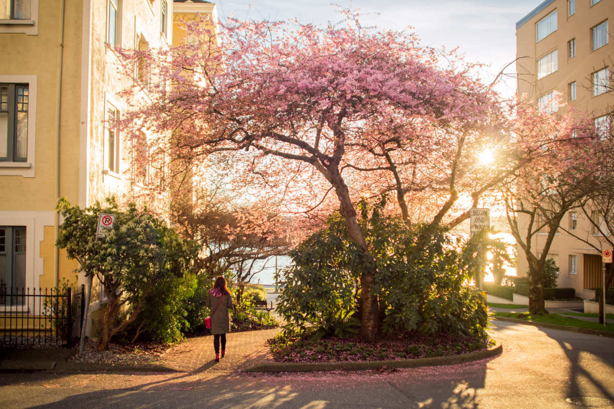 Thaw Out with These 7 Ways to Enjoy Spring in Vancouver