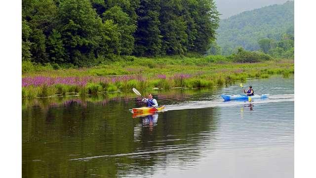 Kayaking Lake Wawaka - East Branch Delaware River 33
