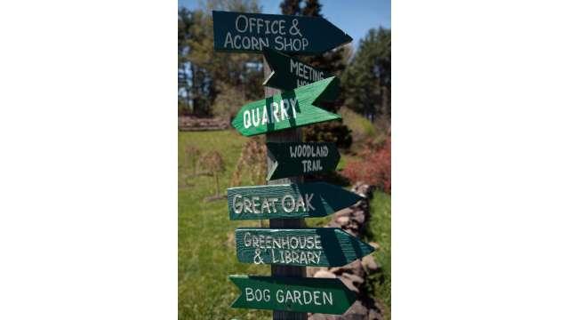 Landis Arboretum 404