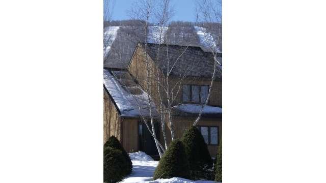 Winter Home / Lodge