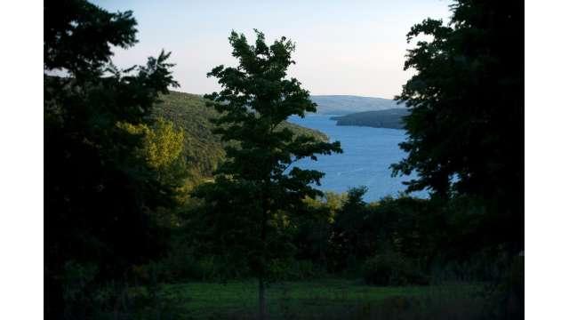 Keuka Lake 985