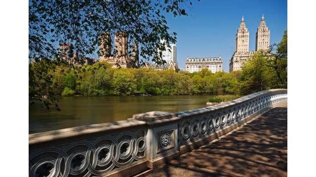 Central Park-Bow Bridge
