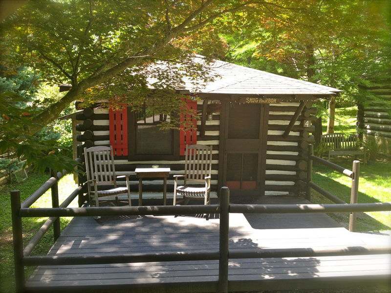 cabins nc for biltmore in mountains rentals cottages cabin asheville lake near sale