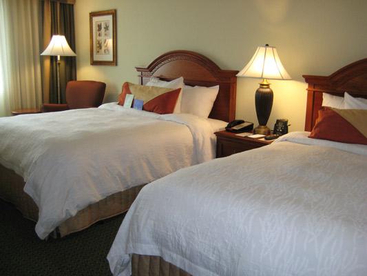 Hilton Garden Inn Athens Guest Room