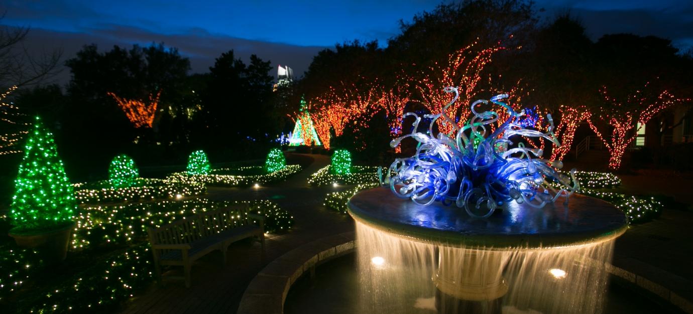 Garden Lights - Holiday Lights