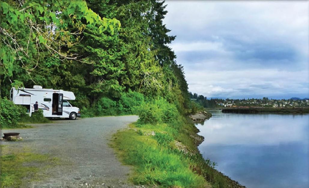 living forest oceanside campground rv rving travel. Black Bedroom Furniture Sets. Home Design Ideas