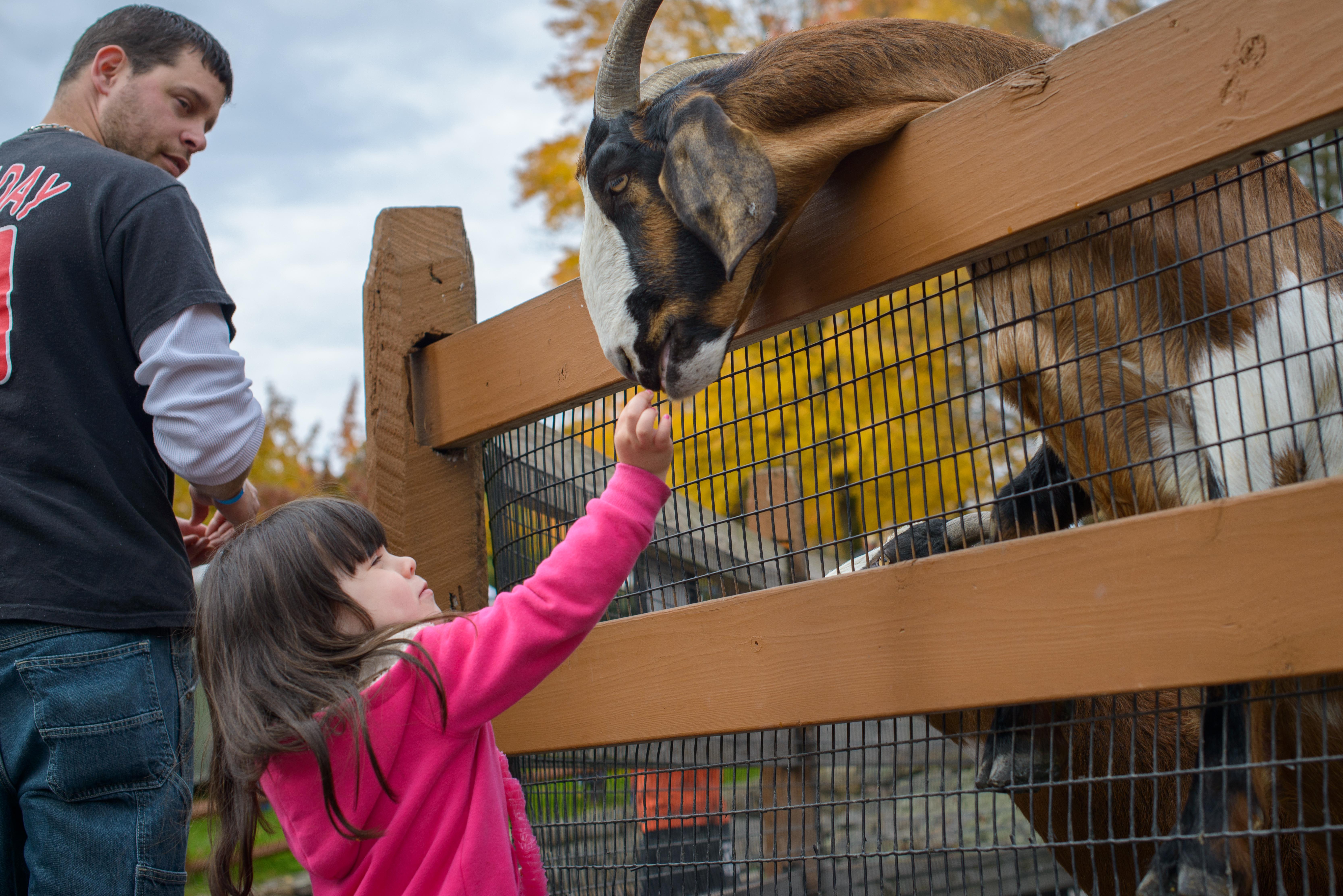 Trexlertown zoo