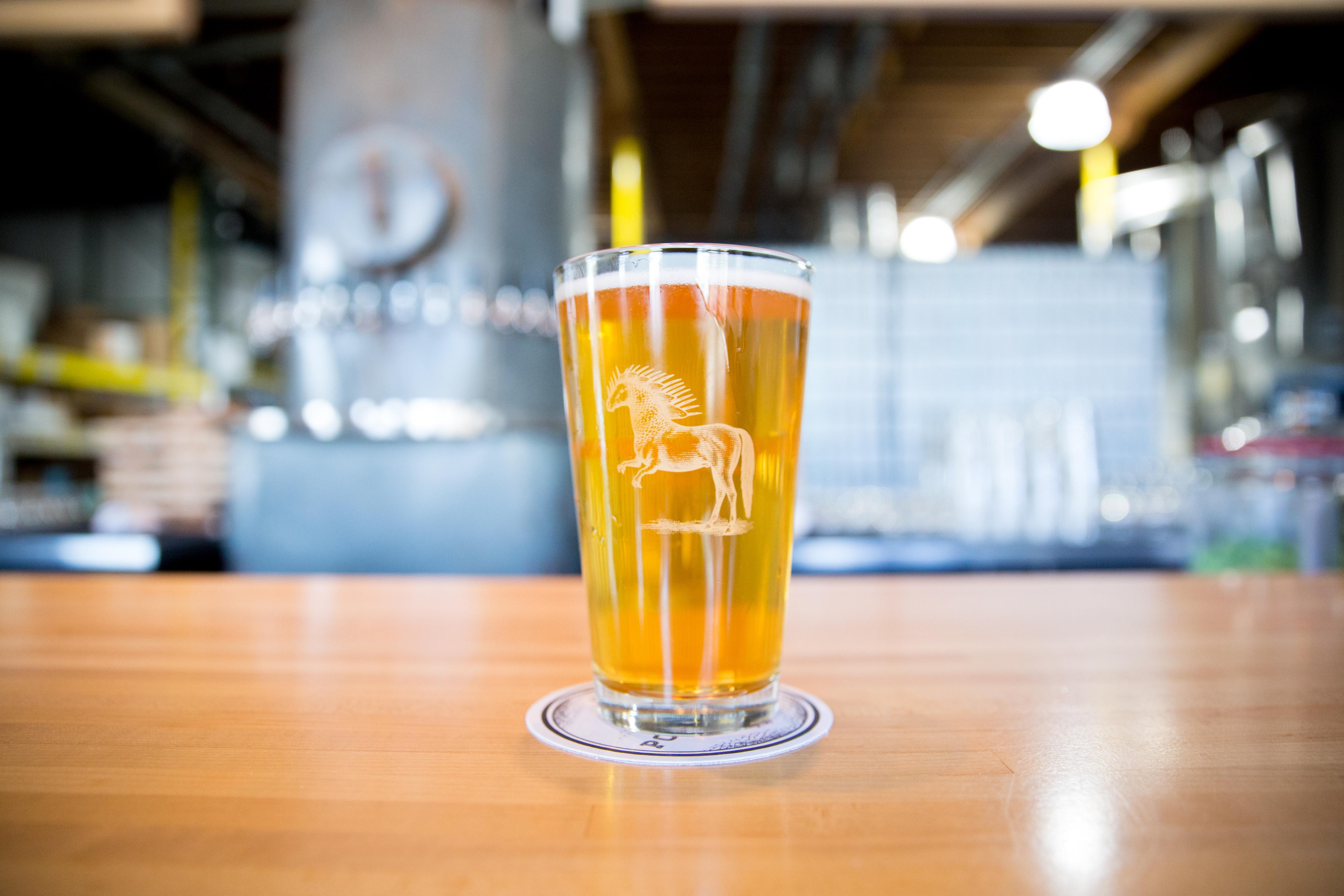 Ponysaurus Brewery