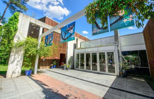 Museum Of Life Science Durham Nc
