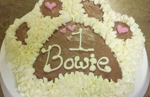 Terrific Birthday Cakes Durham Nc The Cake Boutique Funny Birthday Cards Online Elaedamsfinfo