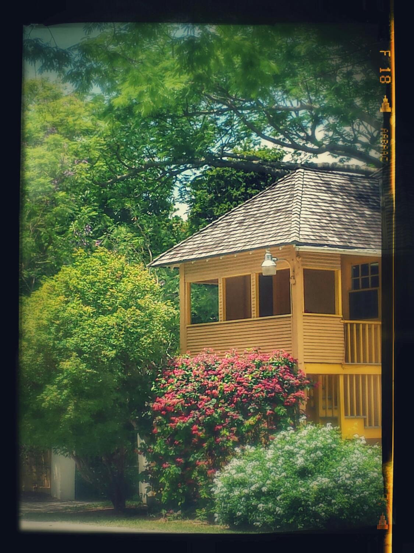 Tour the Historic Bonnet House Museum & Gardens | Fort Lauderdale ...