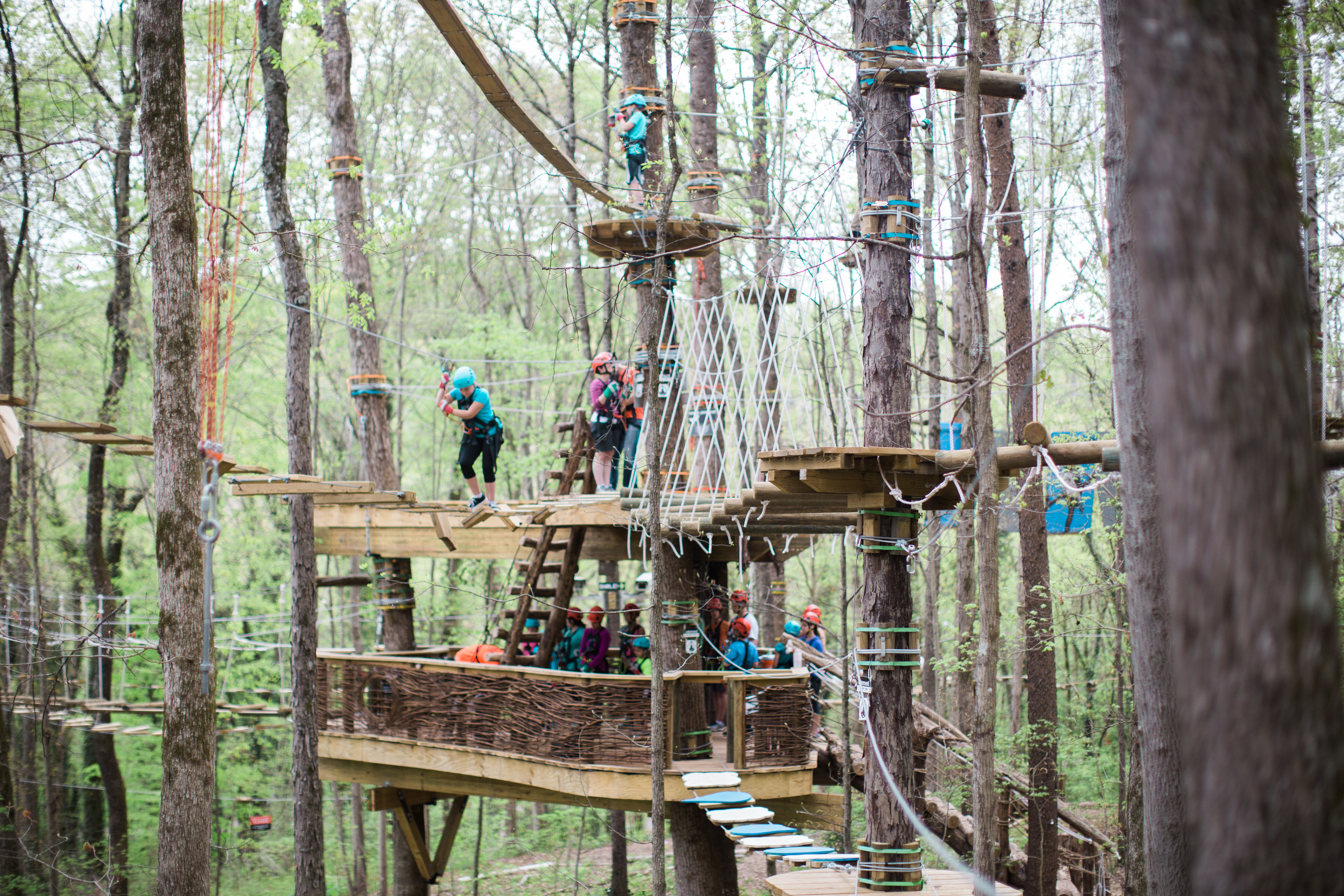 Adventure Trails Start From The Main Treehouse