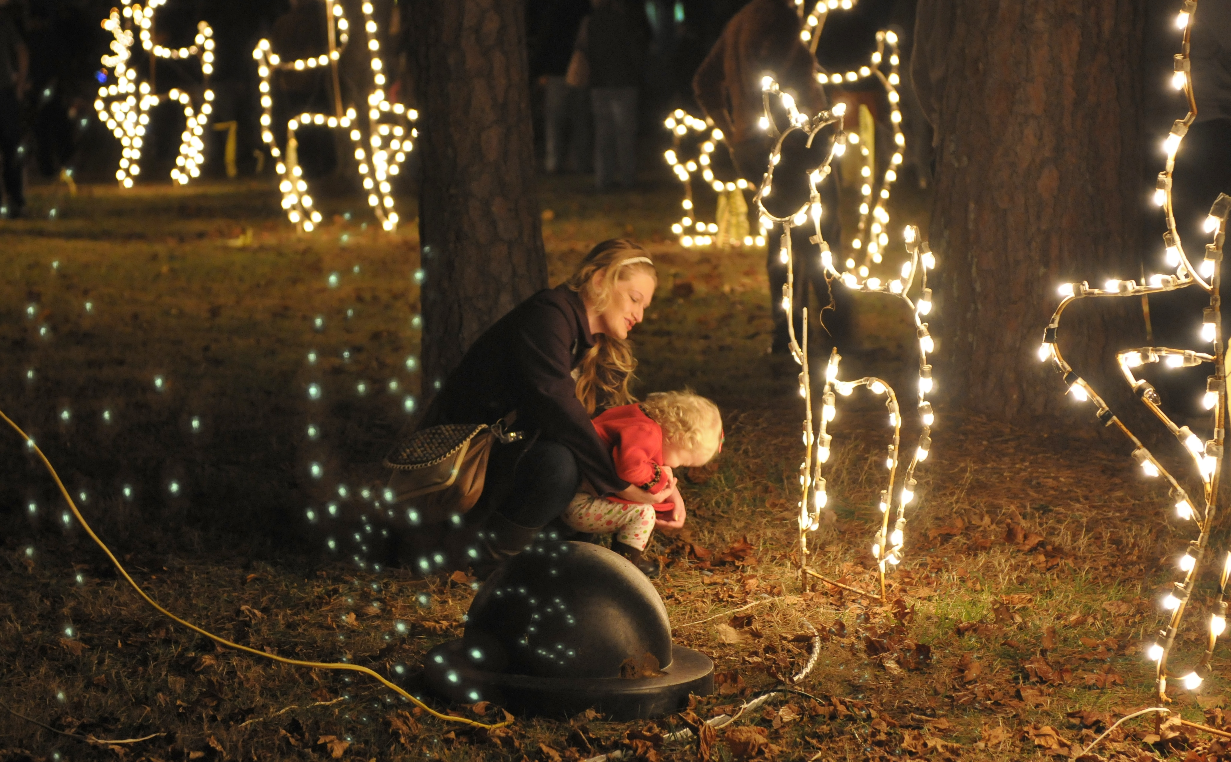 Holiday Festival of Lights at The Cove
