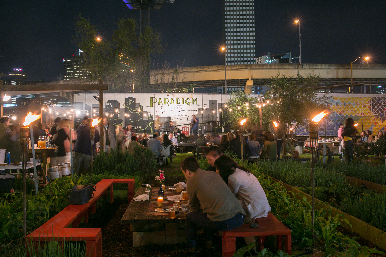 Paradigm Gardens - Concert Series