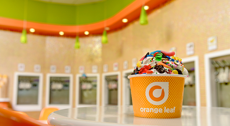 Image result for orange leaf frozen yogurt