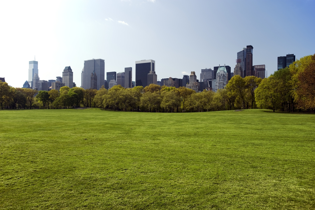 Central Park Manhattan Ny 10019 New York Path Through