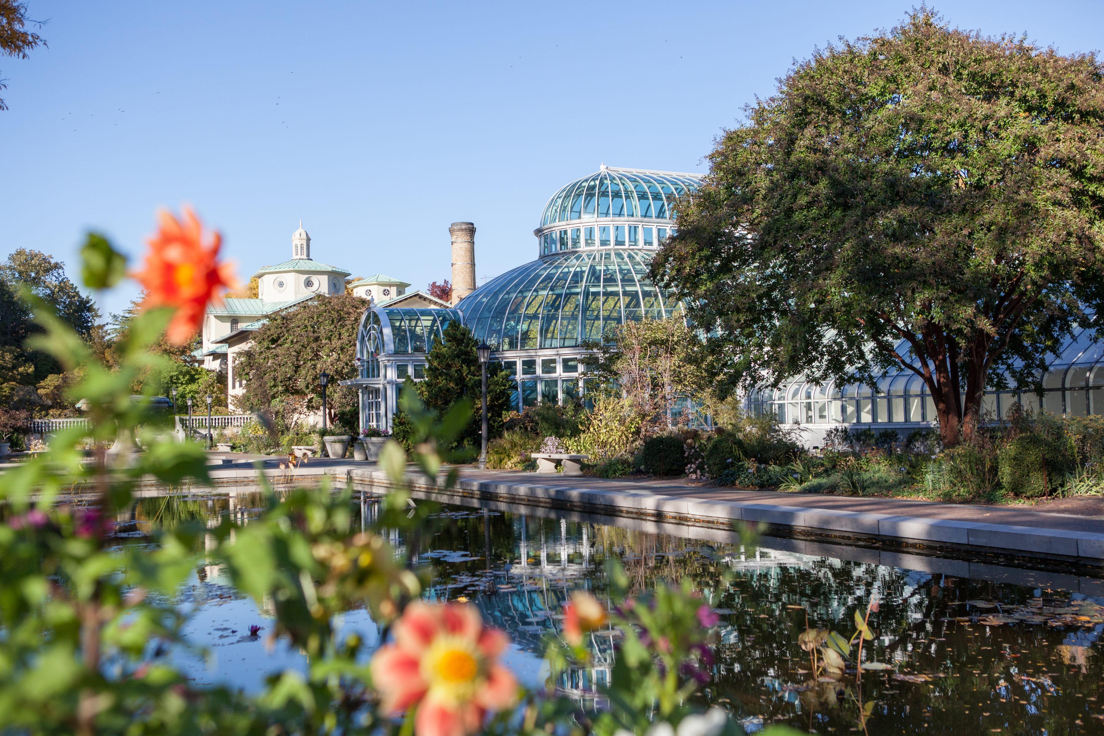 brooklyn botanic - Brooklyn Botanic Garden
