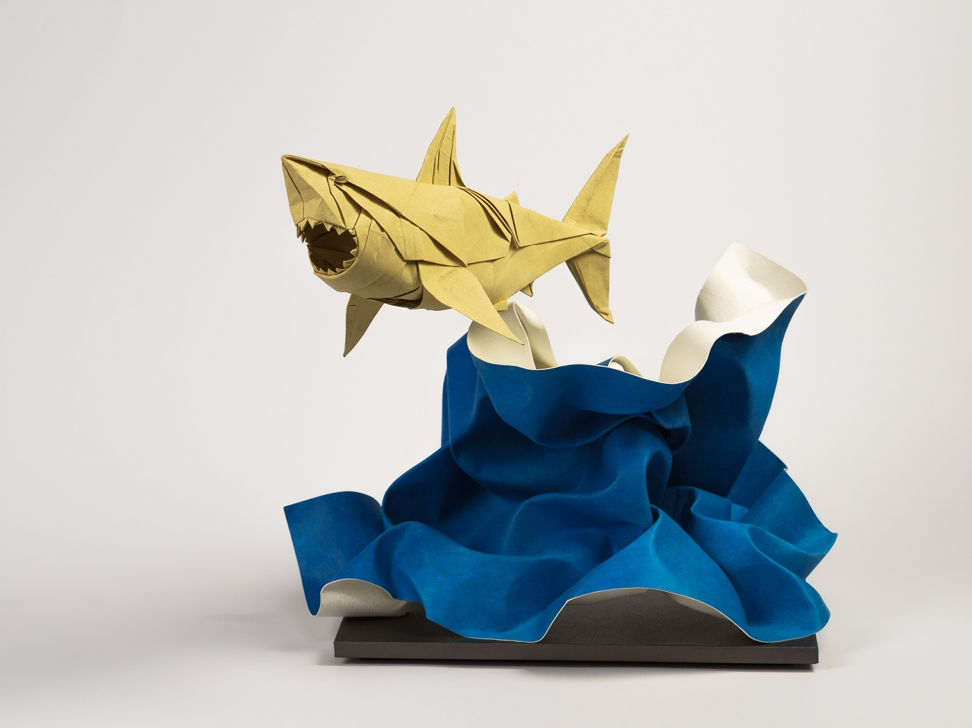 Into the fold the art and science of origami jeuxipadfo Images