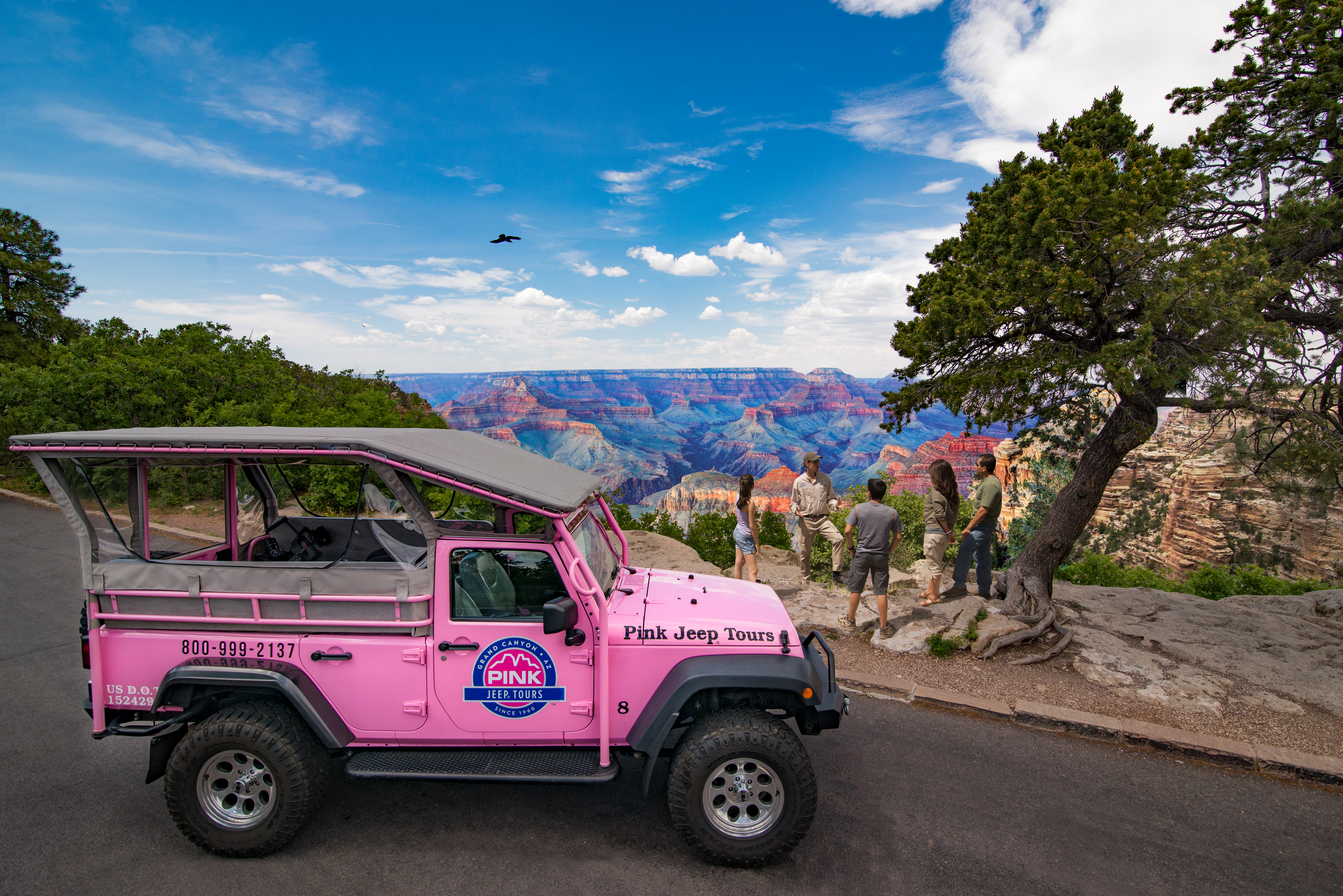 View Larger Image. Pink Jeep Grand Canyon
