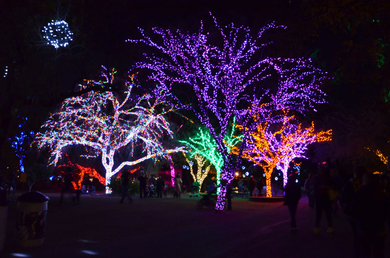 view larger image - Christmas Lights At The Zoo