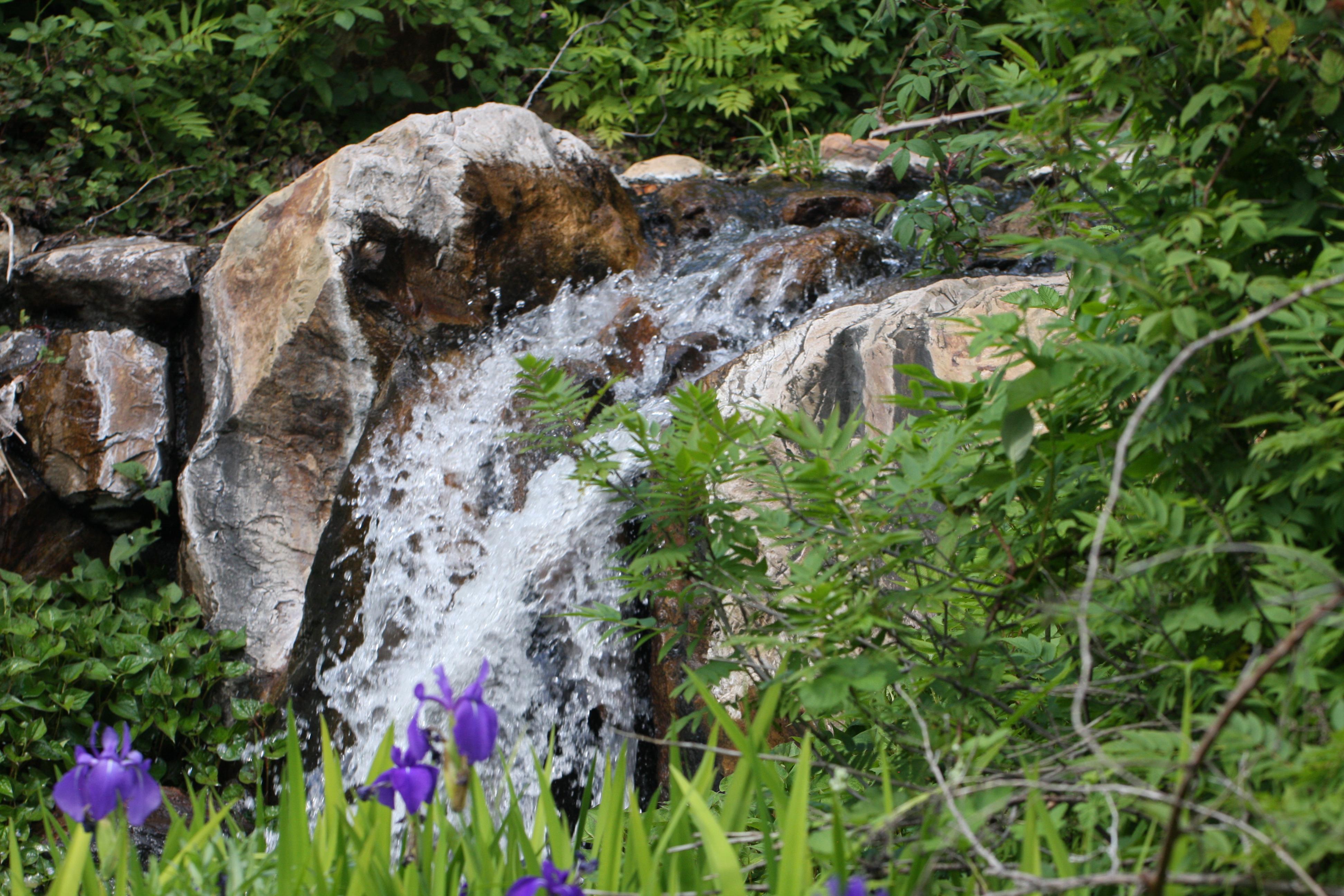 waterfall garden - Quarryhill Botanical Garden