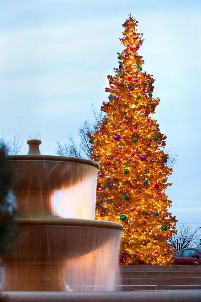 bradley fair christmas tree lighting