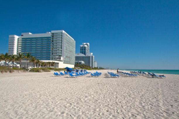 deauville beach resort miami hotels. Black Bedroom Furniture Sets. Home Design Ideas