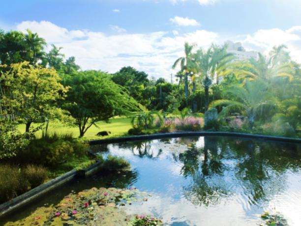 Miami beach botanical garden miami arts culture - Miami beach botanical garden wedding ...