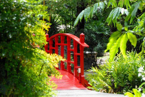 Miami Beach Botanical Garden Miami Arts Culture