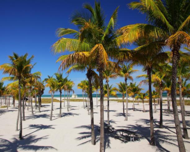 Crandon Park Beach Miami Beaches