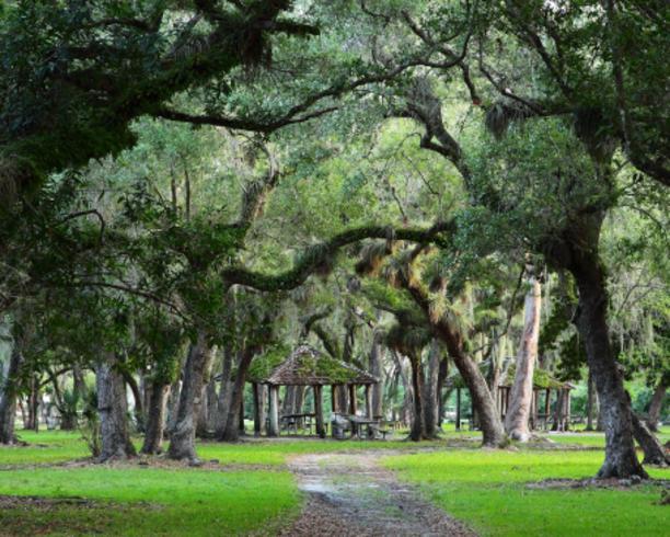 previous matheson hammock park   miami parks  rh   miamiandbeaches