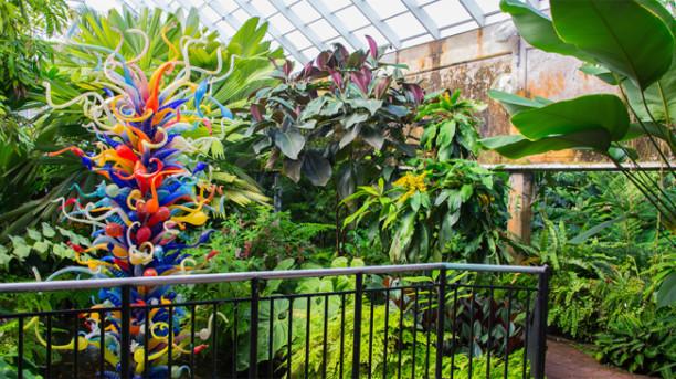 Fairchild Tropical Botanic Garden Miami Attractions
