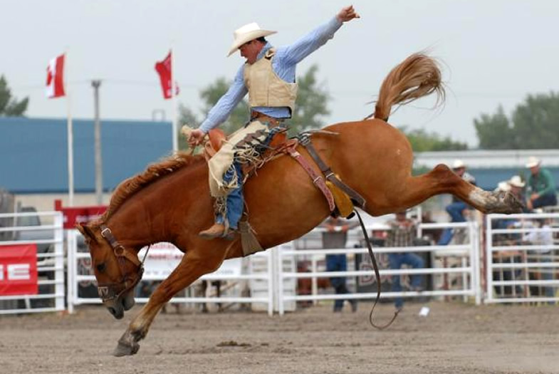 Small town rodeos are hipsters' new delight