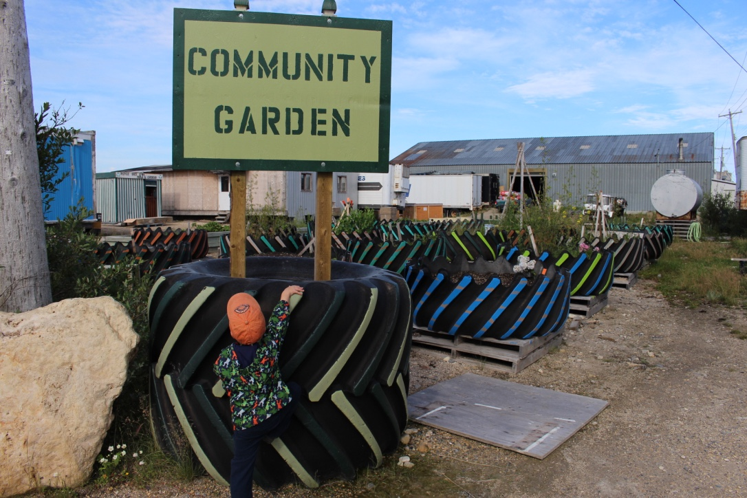 Community Garden in Churchill, Manitoba
