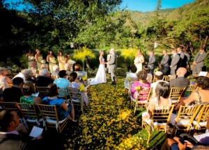 10-longtable-sunflowers