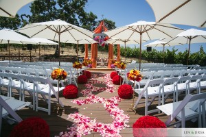 Meritage Resort Wedding 2