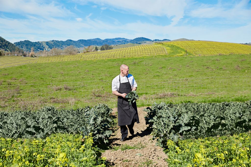 The Carneros Inn culinary Garden