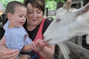 Deanna Rose Children's Farmstead - Feeding Big Goats