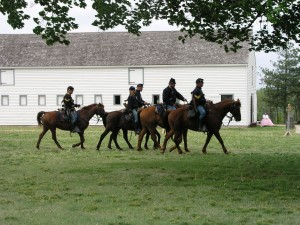 Fort Scott National Historic Site Horses