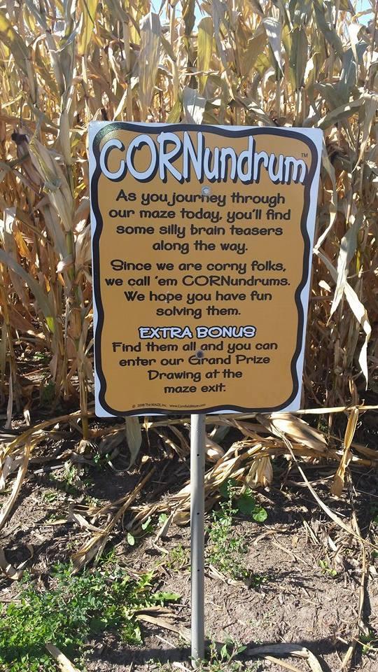 Govin's Corn Maze - By: Emily Steines