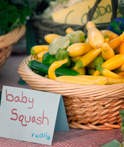 Baby Squash