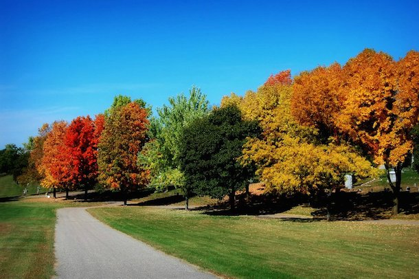 Fall in Eau Claire, Wisconsin by Tim Abraham