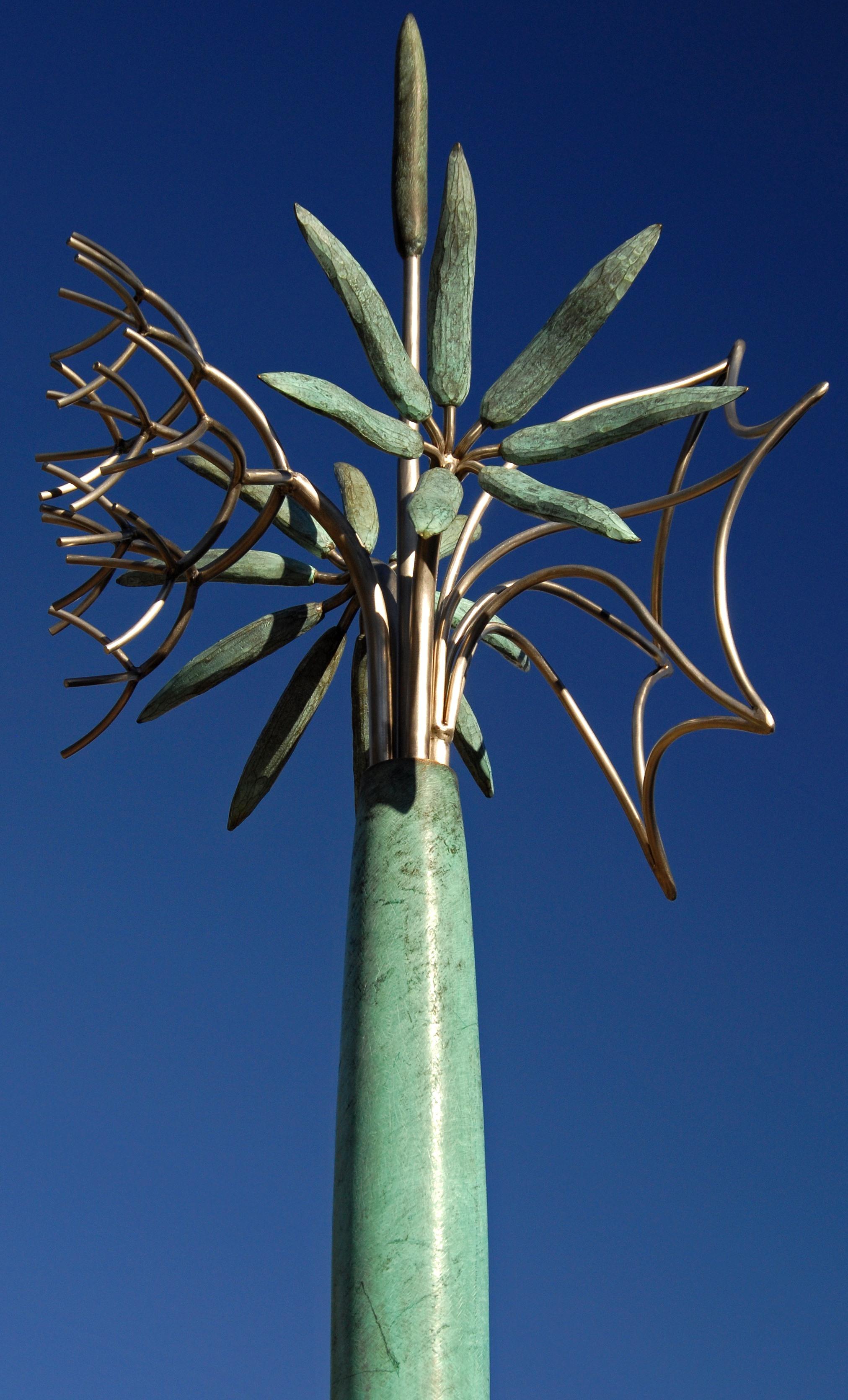 surls tree