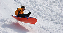 Things to do in Michigan in Winter