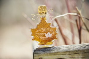 Fenner Nature Center Maple Syrup