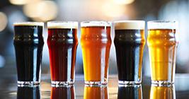Lansing Beer Festival