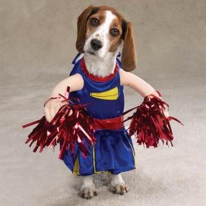 cheerleader-halloween-dog-costumes