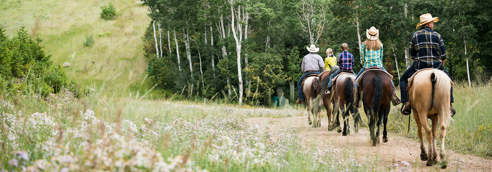 Horseback Riding Park City, Utah | Stables, Ranches & Outfitters