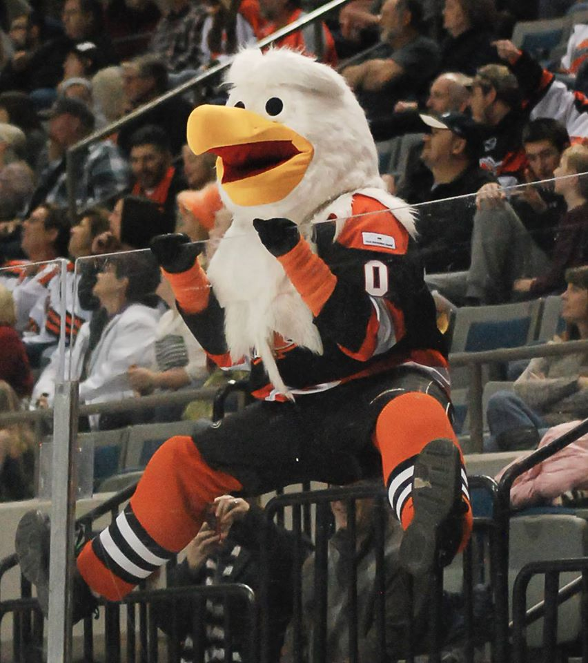Join Icy, the Komets beloved mascot, in cheering on the Komets each game!