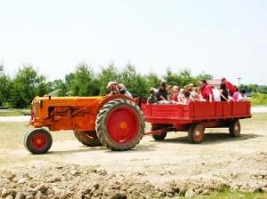 Tractor Ride at Salomon Farm